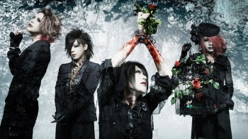 MeteoroiD official website